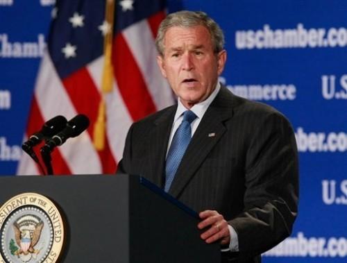 Bush fin de règne.jpg