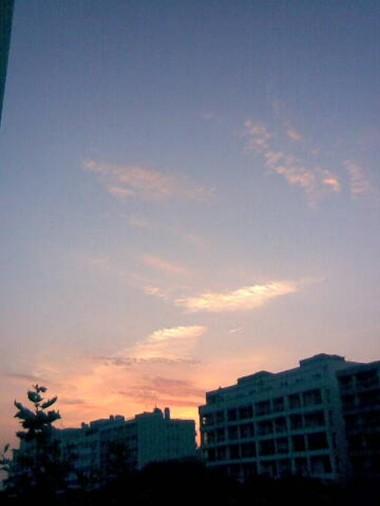 photo.JPG aube dorée 3.JPG