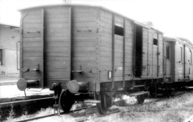 trains-shoah.jpg