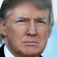 sans-titre.png Trump.png