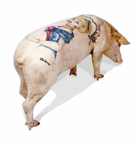 Cochon tatoué.jpg