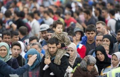 5064515_4988c2d8b1b6d681648cc6b77373fdc395cdf80d_545x460_autocrop.jpg Migrants.jpg
