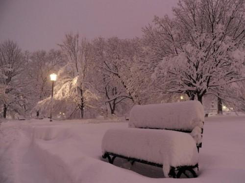 Chutes de neige Washington.jpg