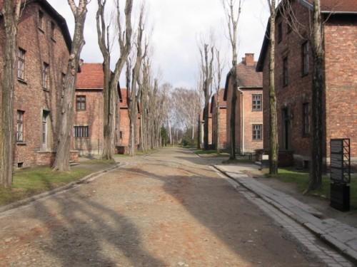 Auschwitz rue du camp.jpg