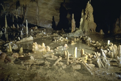 4926455_6_e60d_salle-de-la-grotte-de-bruniquel_7b5954cba991c627f7e0d6a5e8c5dc6f.jpg