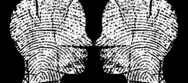 identit---565x250.jpg