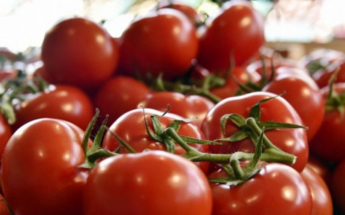 6956931_tomates_1000x625.jpg tomates.jpg