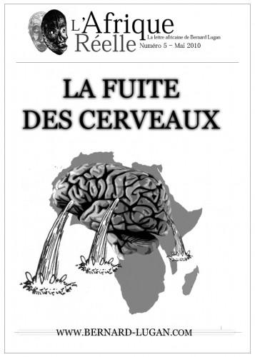 Afrique-reelle-Fuite-cerveaux.jpg
