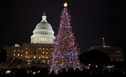 Arbre de Noël à Washington.jpg