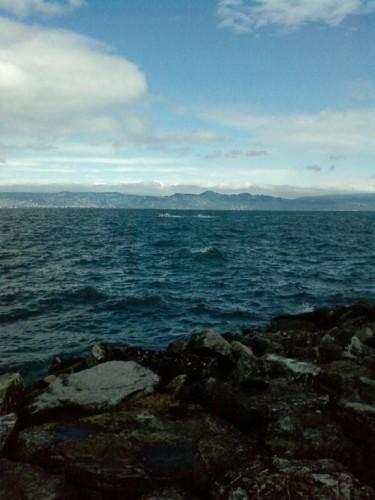 Evian le lac Léman.JPG