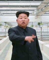 Capture.PNG Corée du Nord.PNG