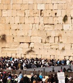 un-jeune-israelien-trouve-un-cheque-de-100-000-dollars-dans-le-mur-des-lamentations_52042_w250.jpg