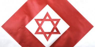 4332627_3_34b0_logo-de-l-organisation-magen-david-adom_6c255edd6b272cf767a8731d41b097c1.jpg