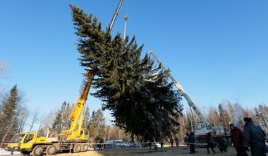 sans-titre.png sapin  de Noël à Moscou.png