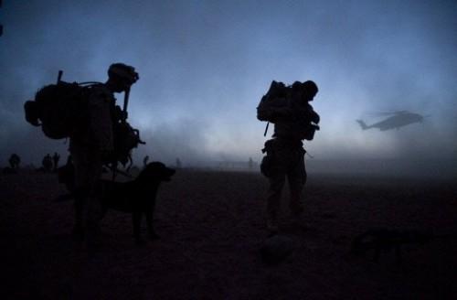 Afghanistan opération Khanjar.jpg