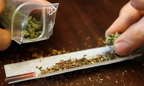 cannabis.jpg shit.jpg