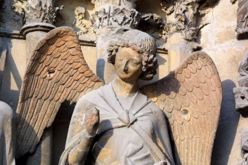 1436755_cathedrale-de-reims-jacques-driol-294.jpg