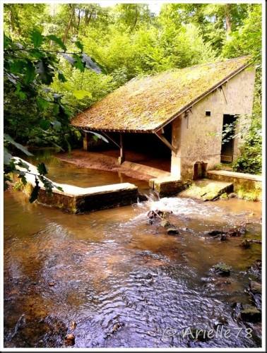 Ancien lavoir Forêt de Rambouillet.jpg