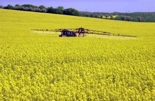 opération de traitement au Monsanto.jpg
