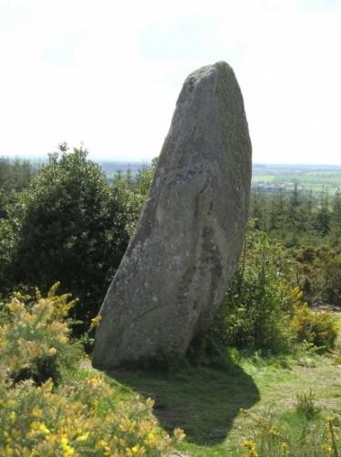 Menhir landes de Locarn.jpg