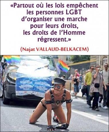 67711_171906622981772_1339774651_n.jpg gay.jpg