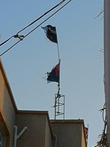 Al-Qaida-Drapeau-3.jpg