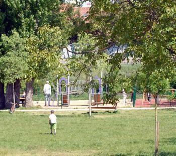 201104171078_w350.jpg Toulouse jardin public viol.jpg