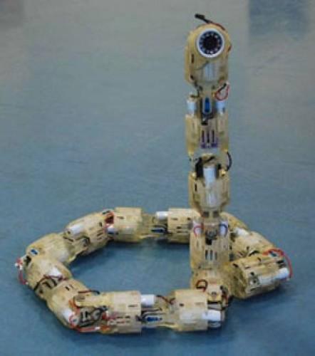 robotserpent.jpg