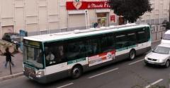 1118369_bus.jpg